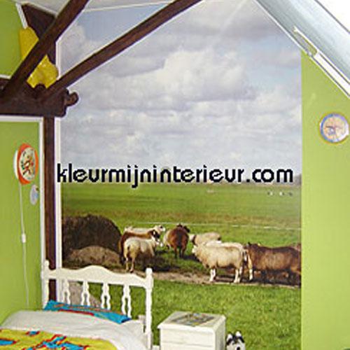 fotoprodukter foto info (nl)