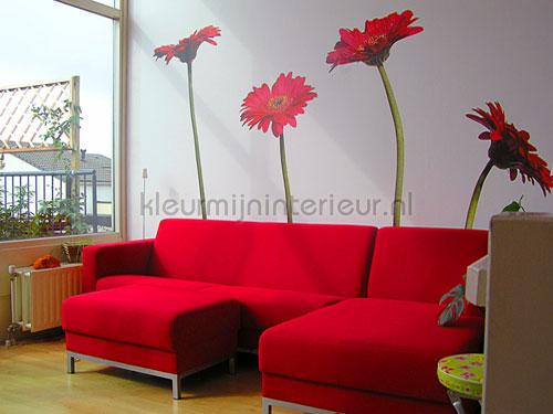 Een fleurige woonkamer ?