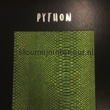 tapeten Python