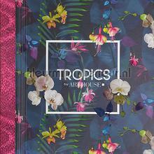 tapet Tropics