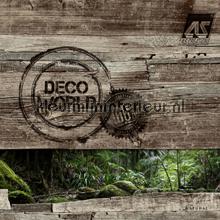 behang Decoworld