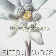 AS Creation Simply White papel pintado