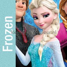 Kleurmijninterieur Disney Frozen fototapet