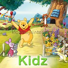 Kleurmijninterieur Kidz rideau