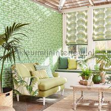 Sanderson Glasshouse wallcovering
