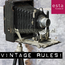 behaang Vintage Rules
