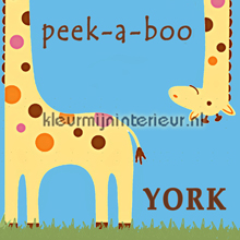 York Wallcoverings Peek-a-Boo fotomurali