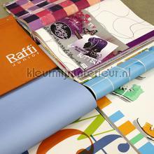 Behangboek tienerbehang tapeten Kleurmijninterieur tapetenpaket