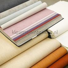 Behangboek uni en structuur Kleurmijninterieur behangboeken opruiming
