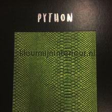 Arte - Python - behang