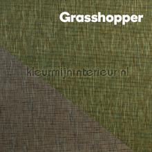 DWC - Grasshopper - behang