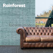 DWC - Rainforest - behang