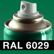 Spuitbus RAL 6029 Munt Groen autolak DupliColor RAL spuitbus sneldrogend