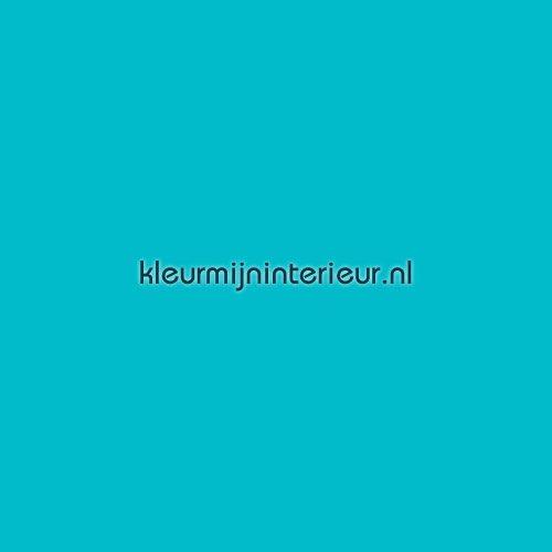 Sky blue plakfolie 8939-04 MACal 8900 PRO