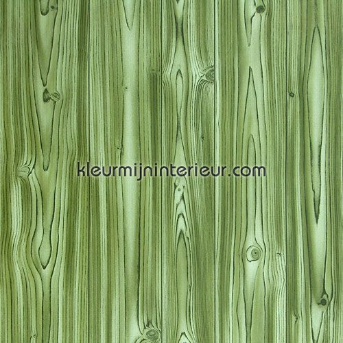 Behang Oud Groen.Oud Behang Hout Groen Behang Kleurmijninterieur Nl