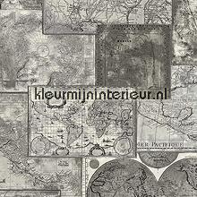 Wereldkaart antique tapeten AS Creation Dekora Natur 6 6643-27