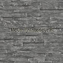 strakke stenen muur tapeten AS Creation Dekora Natur 6 9121-14