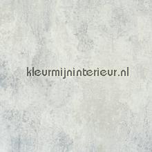 Behang 47553 2016