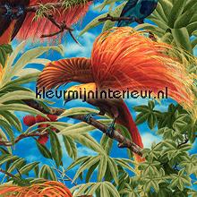 Exotic birds papier peint AS Creation Collected 6954-13