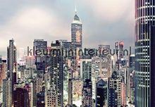 Skyline fotobehang 8-913 Scenics Komar