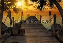 Treasure Island photomural Komar Scenics 8-918