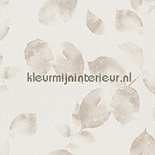Transparant bladmotief licht beige tapeten AS Creation sonderangebote tapeten