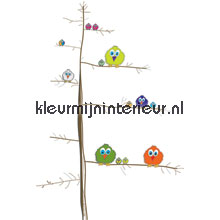 Tweety birds papel pintado Noordwand Little Ones 414043