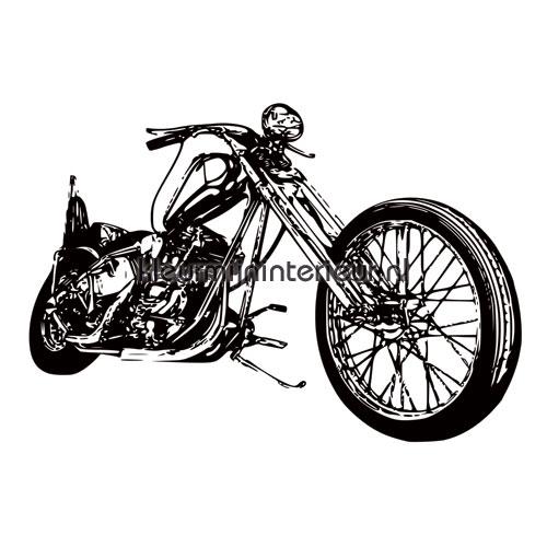 Cool motorbike fotomurali 419026 Auto - Trasporto Noordwand