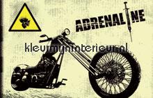 Adrenaline fotobehang Noordwand kinderkamer jongens