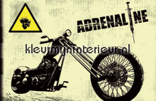 Adrenaline fototapet Noordwand teenagere
