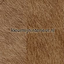 Movida bruin behang Elitis Memoires VP-625-10