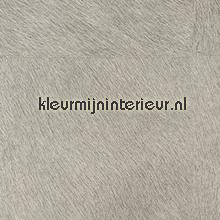 Movida grijs tapeten Elitis Memoires VP-625-28
