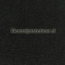 Movida zwart tapeten Elitis Memoires VP-625-06