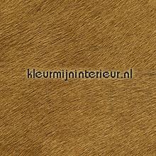 Movida beige bruin papel de parede Elitis Memoires VP-625-30