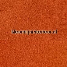 Movida oranje behang Elitis Memoires VP-625-35