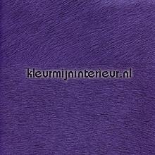 Movida paars papel de parede Elitis Memoires VP-625-38