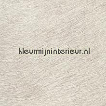 Movida vergrijsd licht grijs beige tapet Elitis Natives VP-625-03