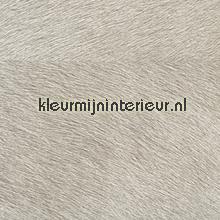 Movida licht grijs tapet Elitis Natives VP-625-04