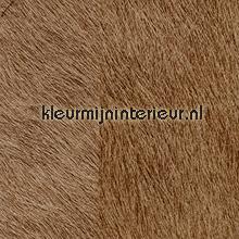 Movida bruin papel de parede Elitis Natives VP-625-10