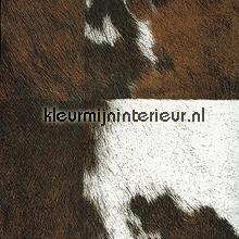 Veracruz roodbruin wit papel de parede Elitis Natives VP-629-01