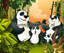 Panda Surprise fototapeten Dutch Wallcoverings Olly OL13016