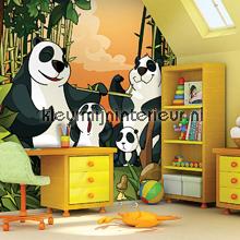 Panda Surprise fotomurales OL13016 Olly Dutch Wallcoverings