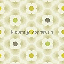 Orla Kiely Papier Peint Harlequin Kleurmijninterieur Nl