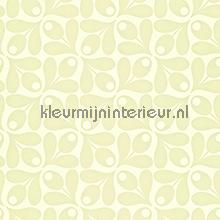 Small acorn cup carta da parati Harlequin Orla Kiely 110416