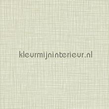 Scribble carta da parati Harlequin Orla Kiely 110424