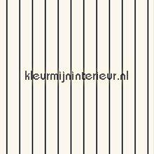 Stripes curtains Esta home boys