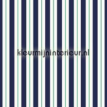 Stripes tendaggio Esta home Regatta Crew 186401