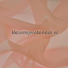 Heel Licht Roze Voile gordijnen AS Creation uni kleuren