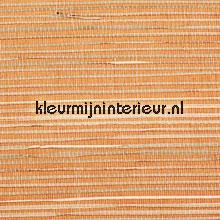 Oranje rush weefsel tapet Rodeka Savanna GPW-12-1003-