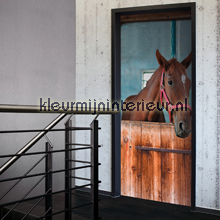 Horse in stable interieurstickers AS Creation dieren